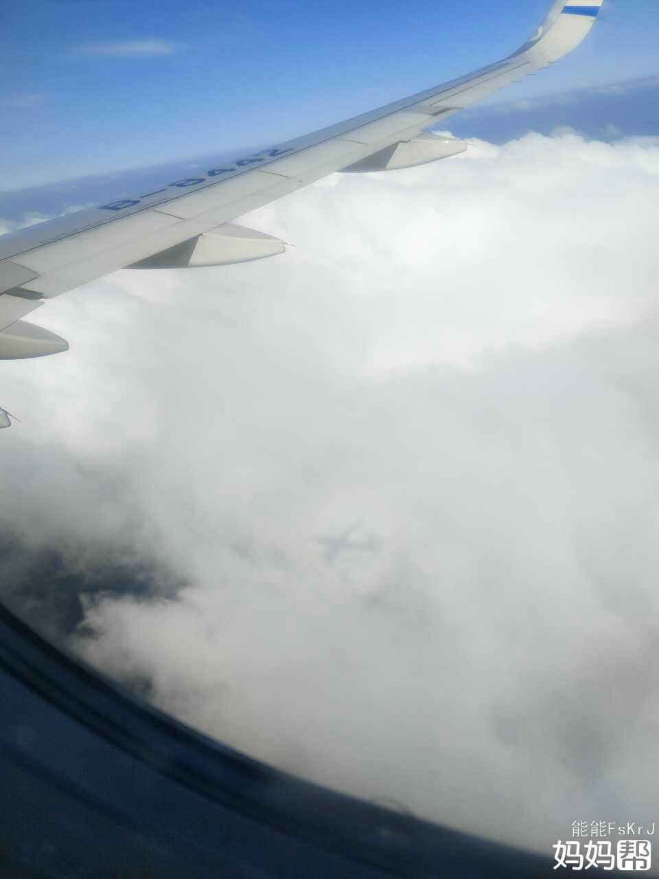 孕5个月坐飞机往返青岛至长沙