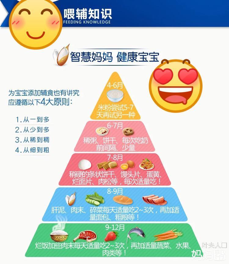 金字塔食谱高清图片