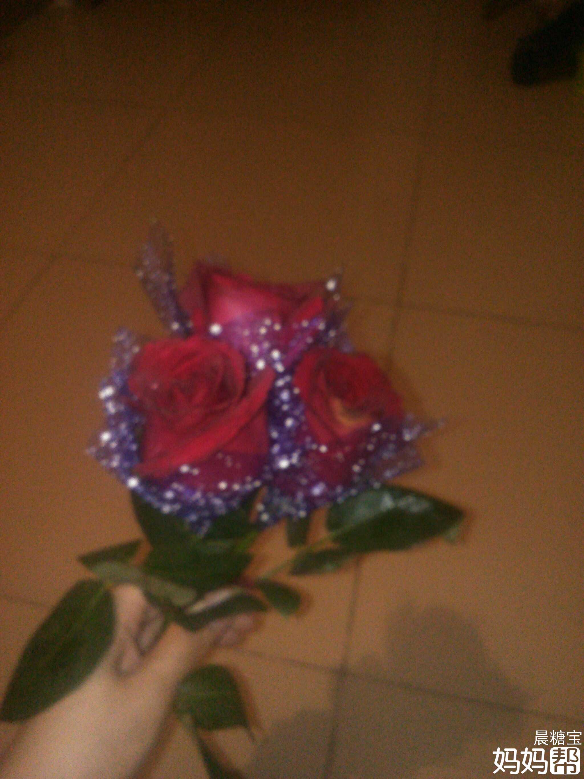 看见垃圾桶旁边有一大束玫瑰花