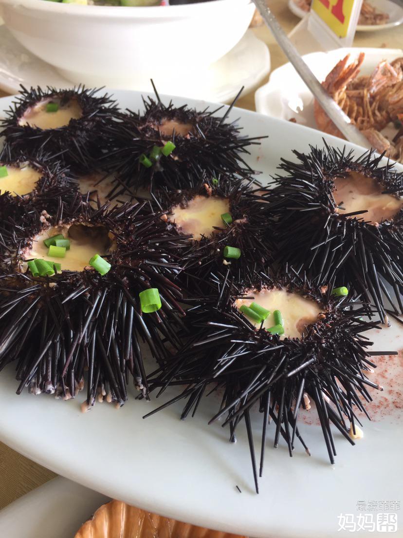 因为在阳江海陵岛,所以餐餐海鲜哦!各位都流口水了吗?哈哈哈