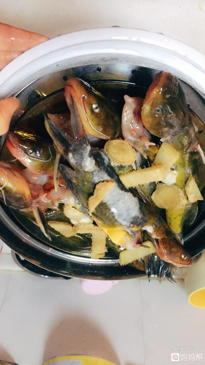 清蒸昂刺鱼(黄辣丁)的做法
