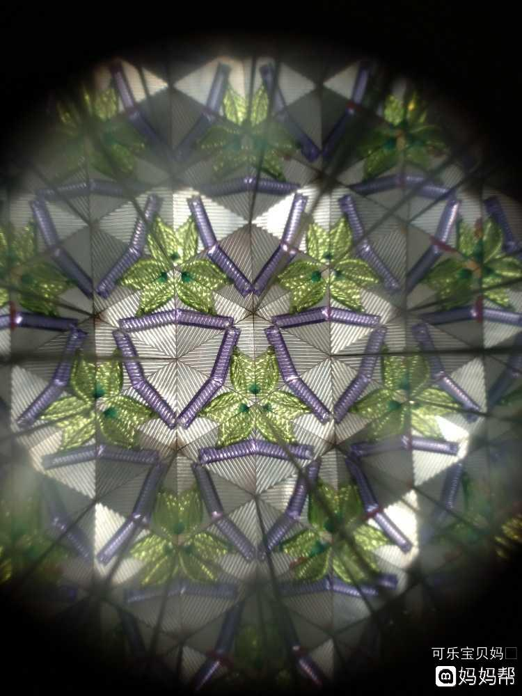 圆柱体手工万花筒植物制作
