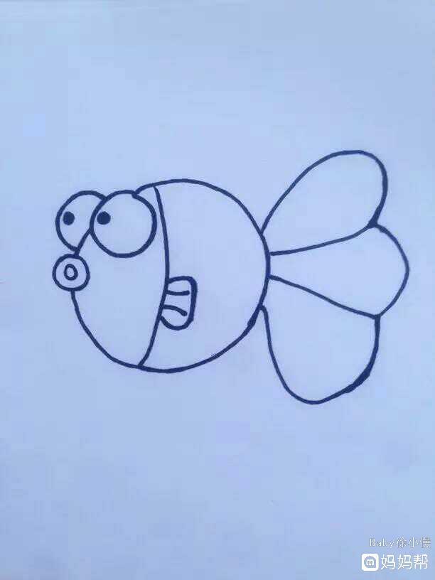 动物的花纹简笔画