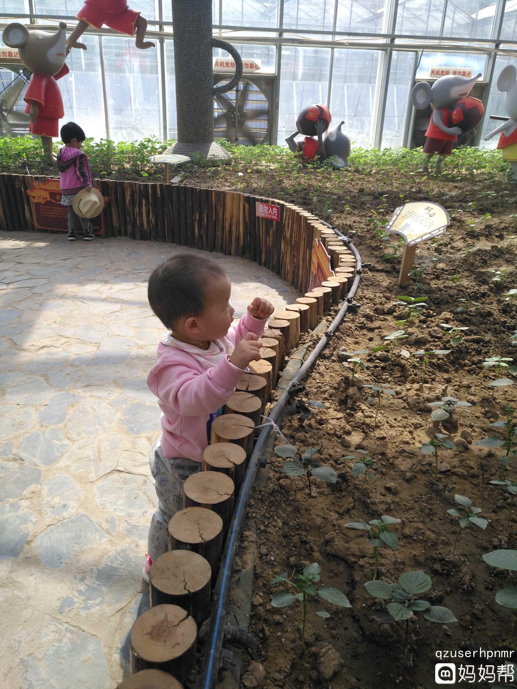 雕塑公园和农业嘉年华[威武][威武]