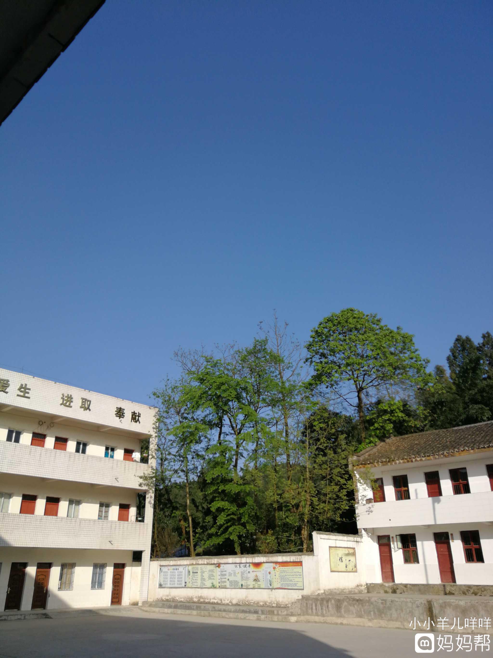 工作的地方,乡村学校的风景.