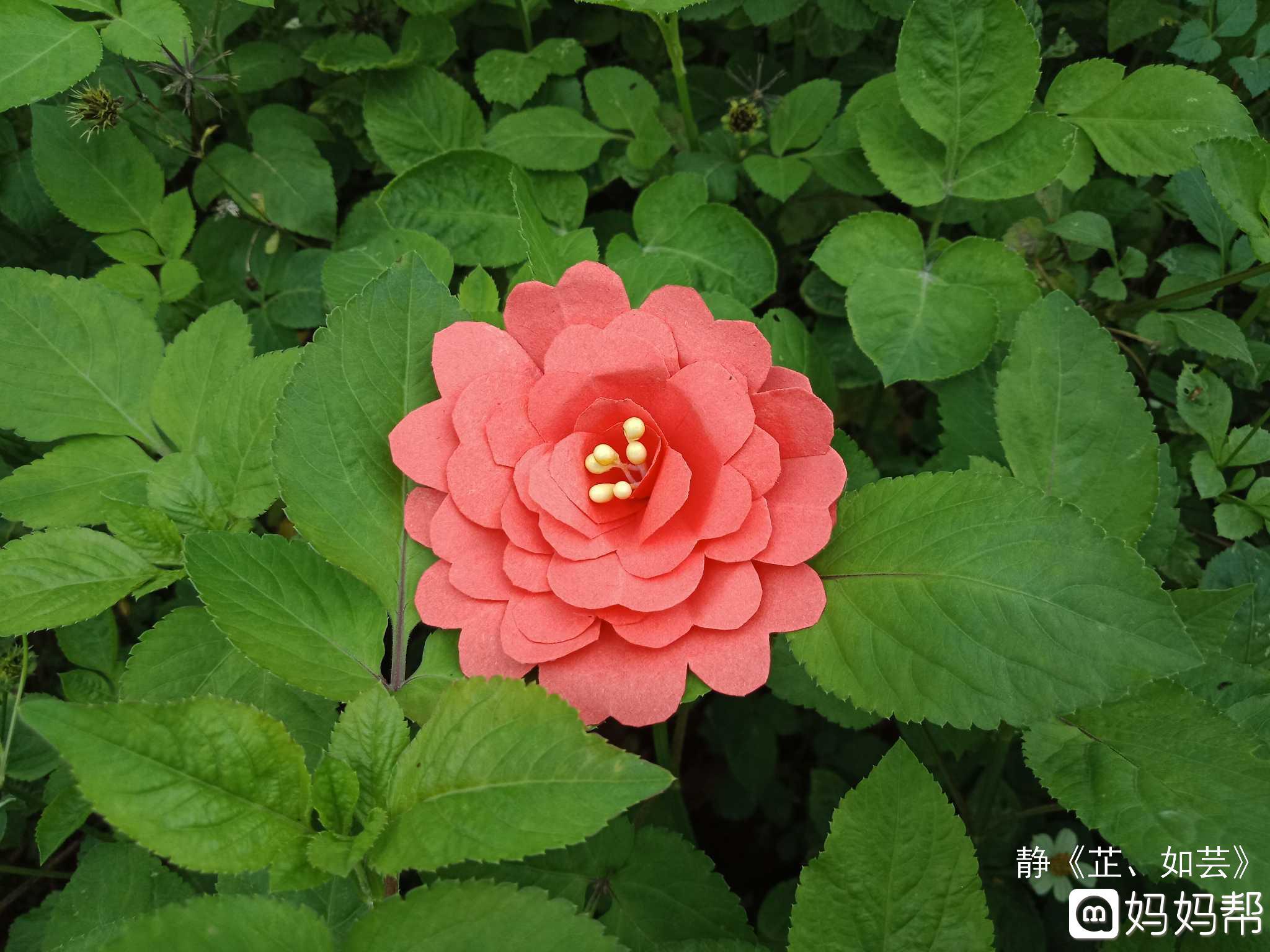 母亲节手大红花-母亲节手
