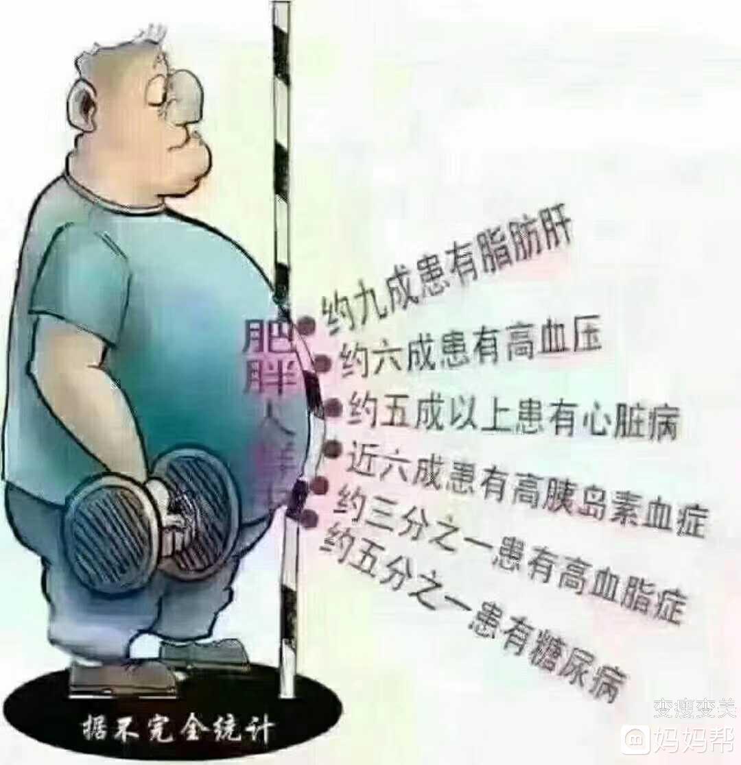 *猜你喜欢*   大肚子的人内脏脂肪占据了肚子的半壁江山,三高,肥胖图片