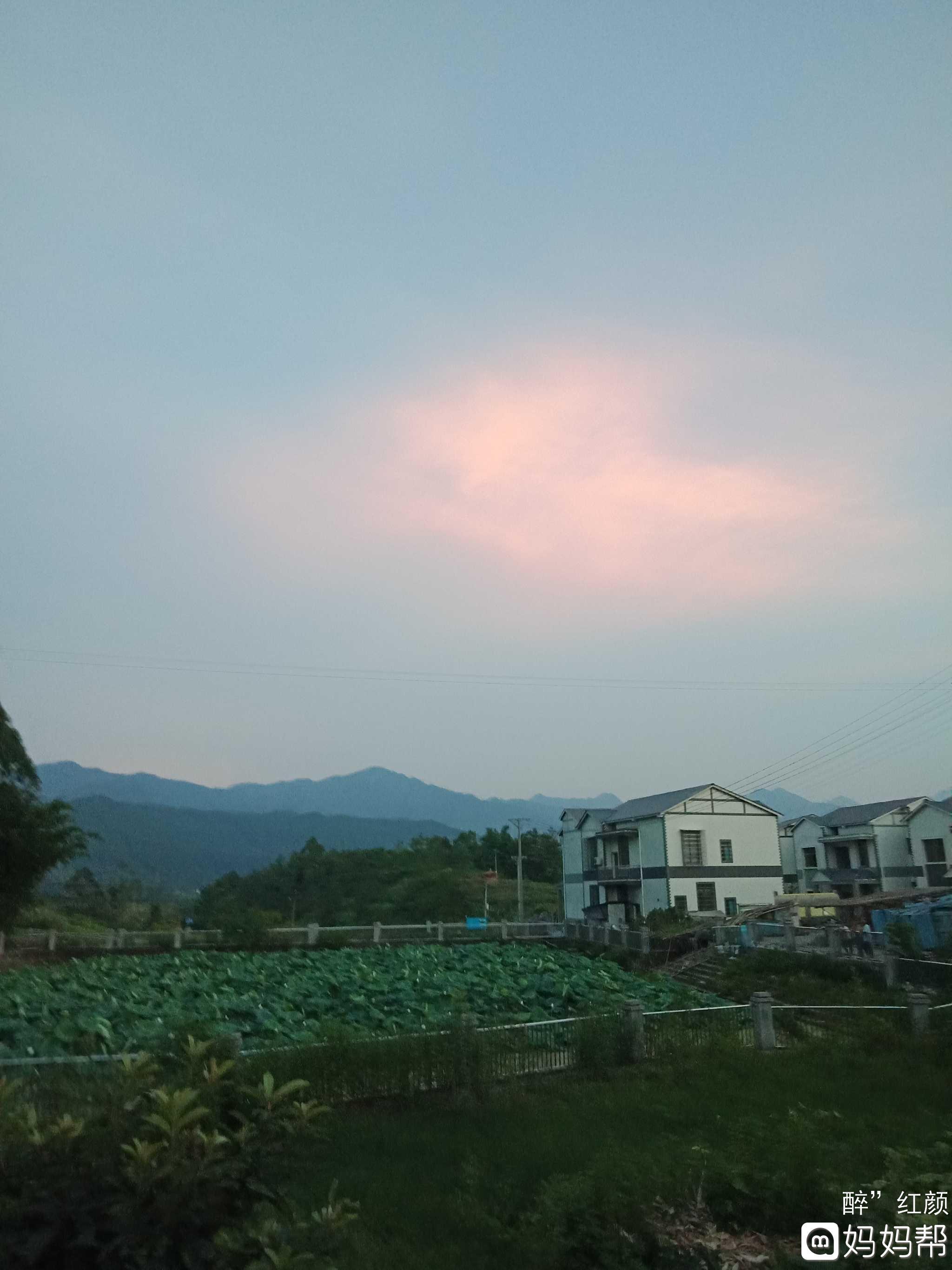 傍晚夏季风景图片