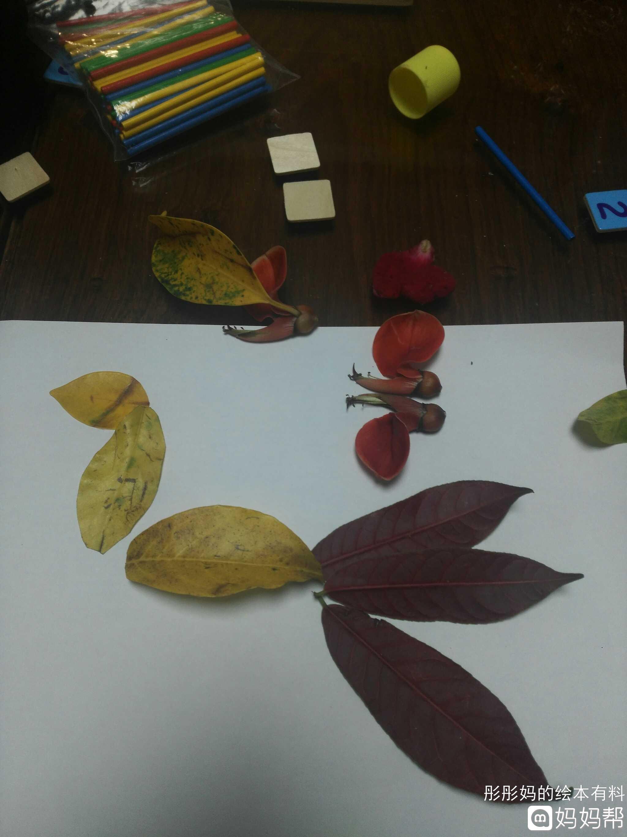 树叶手工制作