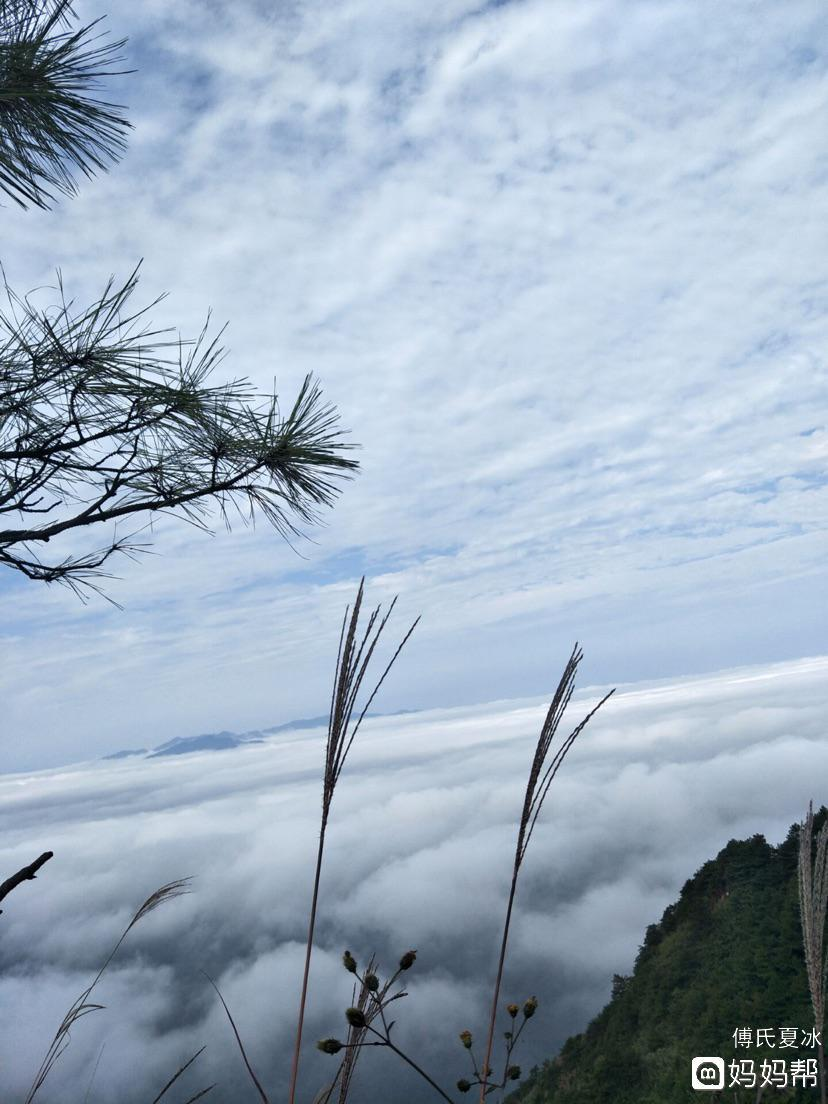 美丽的葛仙山(风景优美空气清新宜人)