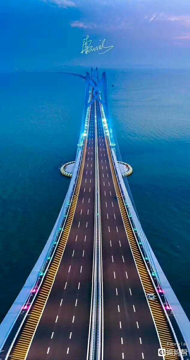 为港珠澳大桥岛隧工程总工程师林鸣点赞!图片