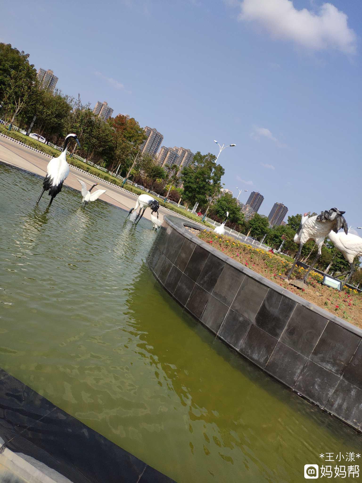 【同城资讯分享】 千鹤湖
