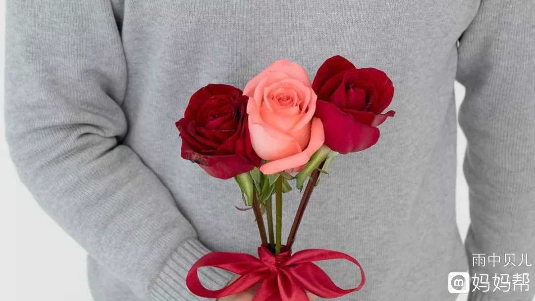 【申精】手工折纸,玫瑰花