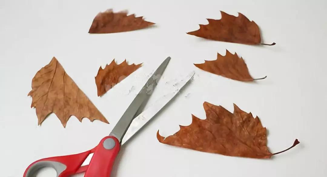 【秋季手工】7款幼儿园创意手工diy,森林里的小刺猬